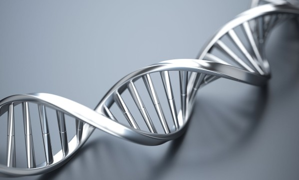 sfs group our dna inventing success together